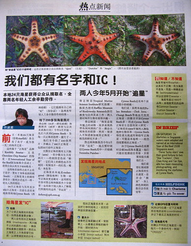 20080811 - My Paper article on Star Trackers (2)