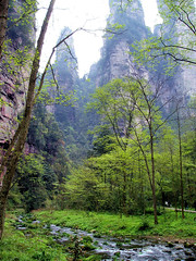 China Travel - Jinbianxi, Zhangjiajie, Hunan  (Lao Wu Zei) Tags: china travel nature scenery photos unesco 100views  hunan worldheritage  zhangjiajie     jinbianxi