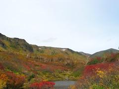 高根ヶ原と緑岳と式部沼