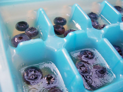 blueberry martini jello shot cubes