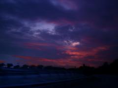 purple sky @ night