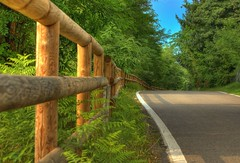 Shortcut (Fabio Montalto) Tags: road wood tree green fence searchthebest shortcut soe hdr naturesfinest blueribbonwinner photomatix nikond200 flickrsbest abigfave shieldofexcellence platinumphoto anawesomeshot superaplus aplusphoto theunforgettablepictures naturewatcher elitephotography betterthangood theperfectphotographer 5xps grouptripod wagman30 dragondaggerphoto ncapturenx2