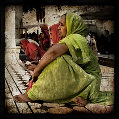 In Praise of Women (designldg) Tags: people woman india heritage temple reading faith religion s ali sikh tradition punjab spiritual shanti soe amritsar sikhism goldentemple  abigfave indiasong ysplix goldstaraward articulateimages