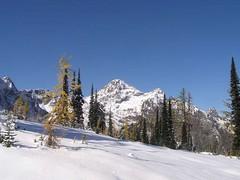 Black in distance across the snow field