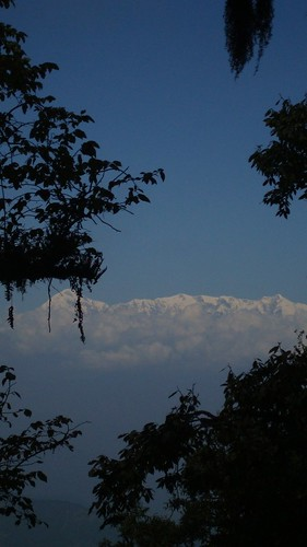 View of the Himalayan Peaks from the Binsar Wildlife Sanctuary
