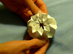 Thumbnail of video Origami