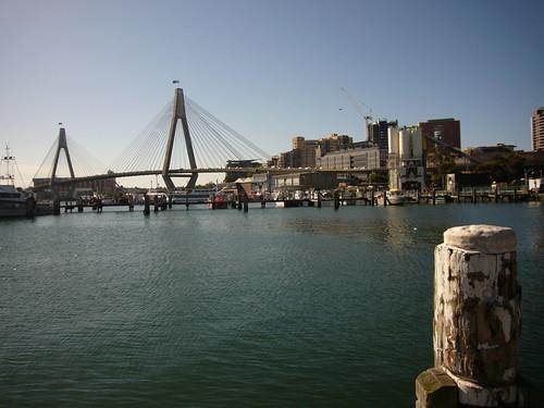 blog australie voyage travel backpacker anzac bridge fish market