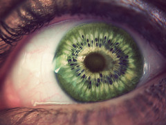 Your the kiwi of my eye! (kamilegs7) Tags: macro green look fruit see open seeds explore eyeball veins blink kiwi fantod