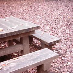 Bench (MiniDigi)