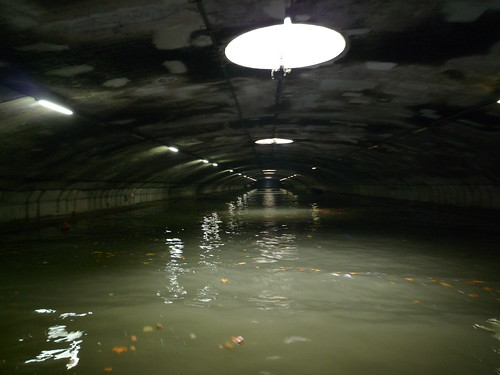Canal under the Bastille