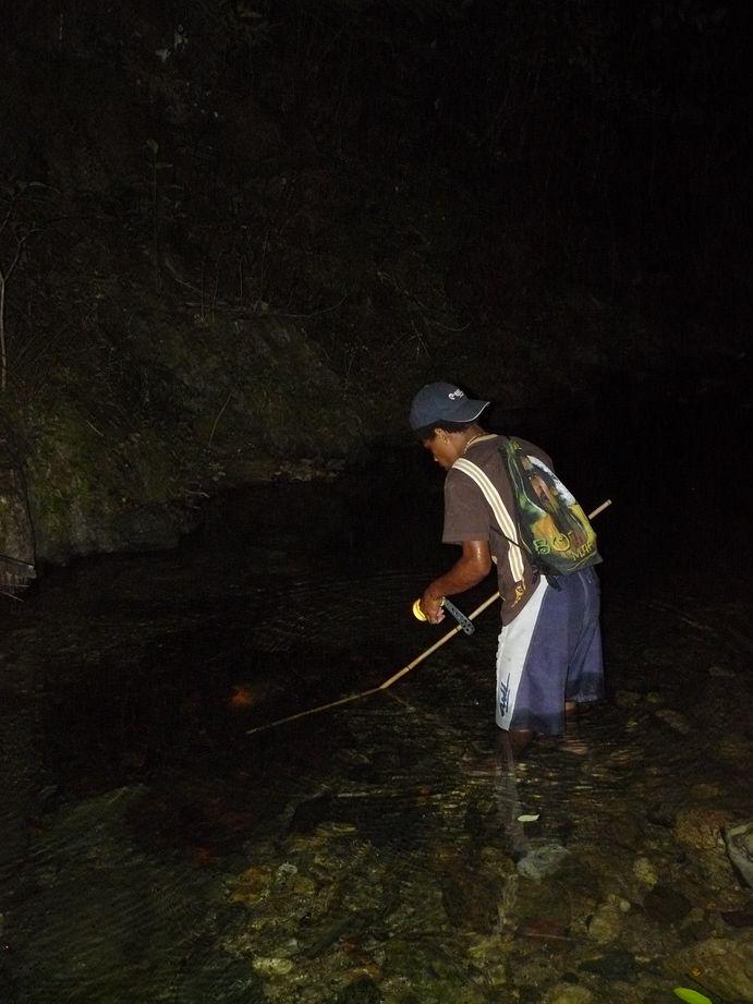 Coup de peche crevettes de Creek de nuit #4