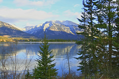 (Kerri's Photos) Tags: canada mountains rockymountains distillery colorphotoaward damniwishidtakenthat kerriphoto