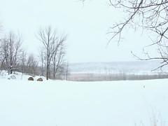 The Distant Pond View (star_cosmos_bleu) Tags: winter blueribbonwinner mykindofpicturegallery goldstaraward