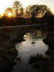 Frozen sunset (treehouse1977) Tags: new trees winter sunset england sun ice water forest frozen nationalpark pond ditch hampshire heath bog newforest mire silverbirch heathland kingstongreatcommon valesmoor strodgemoorbottom smugglersroad