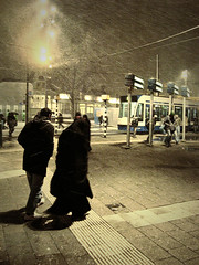 It's Cold Outside (Vineyards) Tags: amsterdam tram centraalstation publictransport centralstation winterweather openbaarvervoer coldwind winterweer wetsnow tryingtogethome nattesneeuw