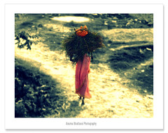 Back To Home !! (Anuma S. Bhattarai) Tags: nepal asia explore kathmandu february nepali koshi sharma anuma anumasharma koshiriver 72lumixpanasonicdmcls70