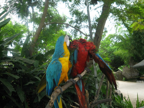 Bali Safari Park, Indonesia