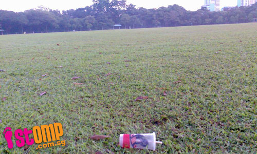 Patrons of nearby McDonald's leave a mess in West Coast Park
