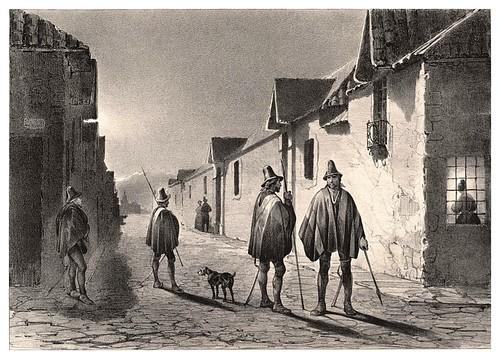 006-Serenos nocturnos en Santiago de Chile-Journal de la navigation autour du globe… 1837-Barón de Bouganville-fuente BOTANICUS