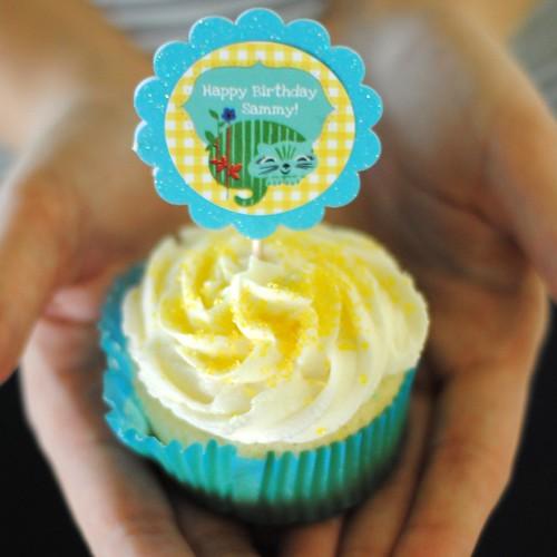 Cupcake in detail