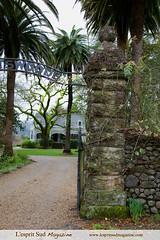 Spottswoode Estate (St Helena, CA) (Scrumptious Venus) Tags: california travel napavalley sthelena winecountry robertparker spottswoode lindanovak lespritsudmagazine gastronomymagazine grancruvineyards marynovak bethnovakmilliken