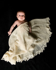 Celeste - 2 months old (by DanielJames)