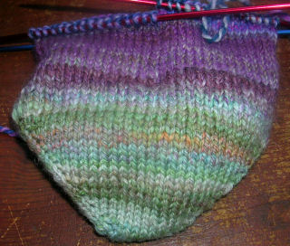 purple and green sock 2