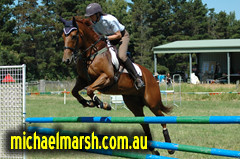 Berry_March_08 251 (michael_marsh_photos) Tags: horse berry poles equine showjumping showjump jumpclub berryjumpclub berryridingclub michaelmarsh michaelmarshphotos