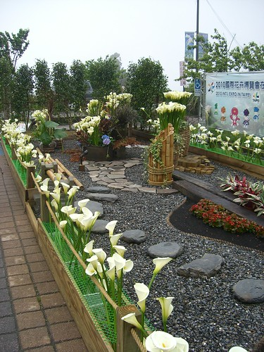 Small plot of ground housed with Calla Lily flowerpots