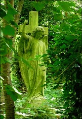 Green Angel (Cul 9) Tags: london graveyard angel woods highgatecemetery westcemetery