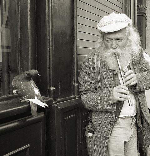 The Flutist by ddindublin.