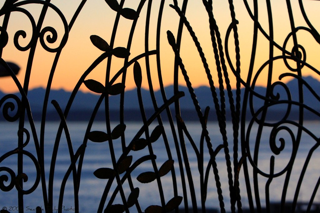Sunset View Fence