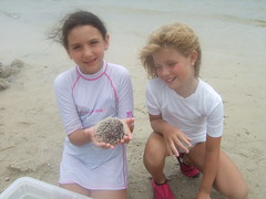 Darby and Lauren with Sea Urchin