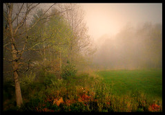 Early morning fog (Amy V. Miller) Tags: pictures morning west eye beauty fog proud landscape gold star virginia spring crystal over award shield awards soe brilliant jewel unforgetable excellence appalachians irresistable blueribbonwinner photoshopper theunforgettablepictures goldstaraward pipstem