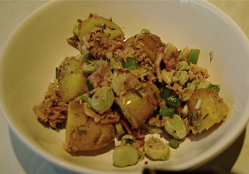 warm salad of broad beans, tuna, bacon and potato
