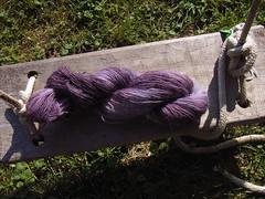 eingirni handdyed purple