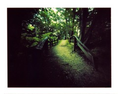 VELEM (jonespointfilm) Tags: 3x4 alternativephotography camerabuilder cameramaker cameraobscura epsonperfection3200photo epson expired exposurechart exposureconpensation filter homemadepinhole homemade hungary instant lenoxlaser lenox lenslessphotography lensless lightmeter lochkamera lofi longexposure longtimeexposure longtime lowfidelity lowfi lyukkamera magyarorszg manfrotto mattebox mediumformat minoltalightmeter packfilm peelapart photoshop pinholeimage pinholephoto pinholephotography pinholepicture pinhole polaroidphoto polaroidphotography polaroidpinhole polaroid scanner silverfast silverfastse tiffen unsharp velbon withoutlens blur blurvision soft softfocus creative creativephotography slowshutterspeed shutter opticalphilter opticalfilter peelapartfilm