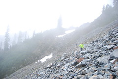 Across the Talus Fog