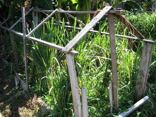plant frames