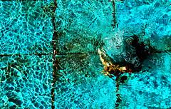 Blue (Hamzeh Karbasi) Tags: blue b water fountain garden persian iran d azure persia p fin ایران kashan esfahan isfahan اصفهان باغ فواره کاشان ایرانی آب fingarden hamzeh آبی hamzehkarbasi حمزه فین baghefin حمزهکرباسی باغفین فیروزه تنهاخوری friendstags فیروزهای