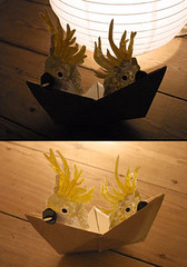 Cockatoo Boat (benconservato) Tags: bird illustration boat origami emma australia kidd cockatoo ricepaper benconservato emmakidd