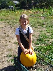 Cornflower and her pumpkin