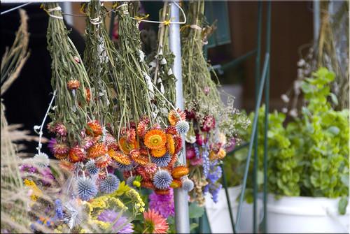 FarmersMaket2008 Hanging Flowers