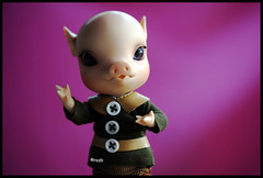 It's like this...I have a new name! (rockymountainroz) Tags: pig bjd babalu elfdoll clarencewinterberry