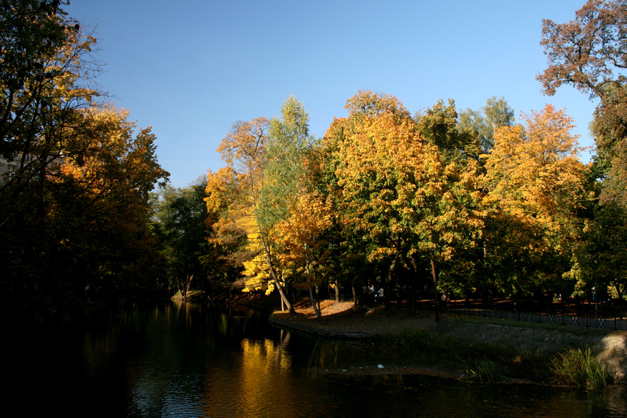 Polish Gold Autumn