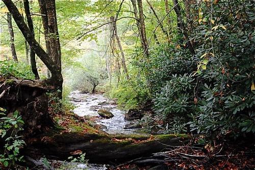 creek-power
