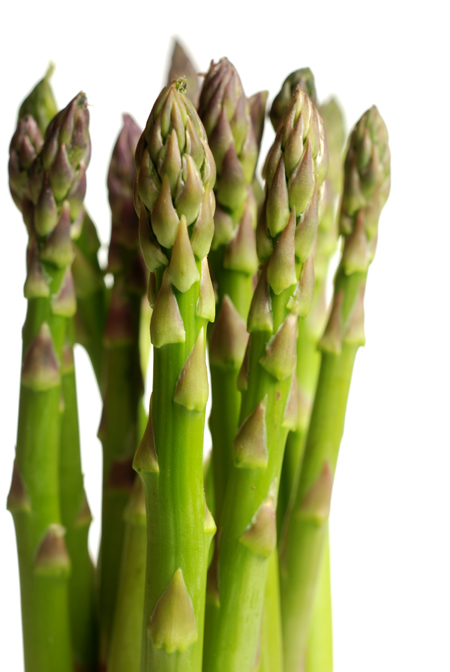 green asparagus© by Haalo