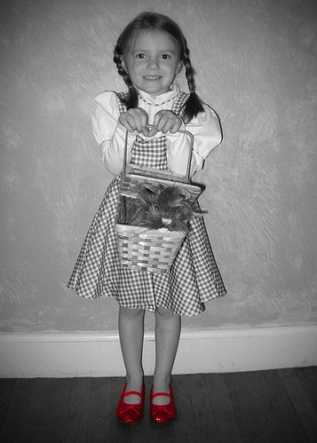 Dorothy 3