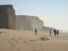MartinsBeach_2007-082 (Martins Beach, California, United States) Photo