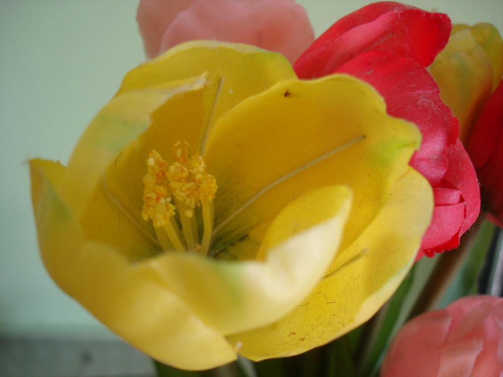 BEAUTIFUL FAKE FLOWERS
